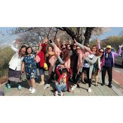 Tour Hàn Quốc hè 2018 siêu khuyến mãi