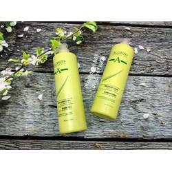 Dầu gội xả phục hồi tóc khô và hư tổn Alonzo Recover Care 1000ml