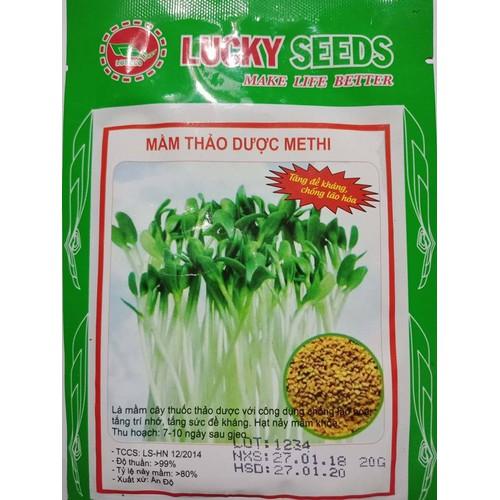 COMBO 5 gói hạt giống rau mầm thảo dược Methi TẶNG 1 phân bón