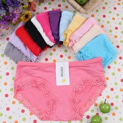 combo 10 quần lót nữ viền ren chất cotton cao cấp