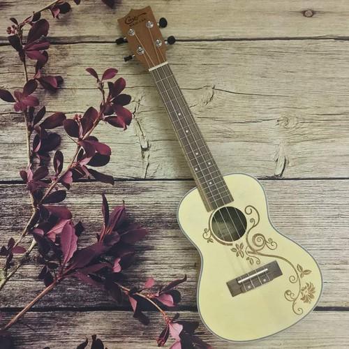 Đàn ukulele concert hoa lá