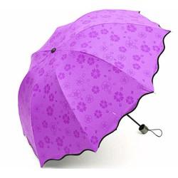 Dù gấp đi mưa gặp nước nở hoa