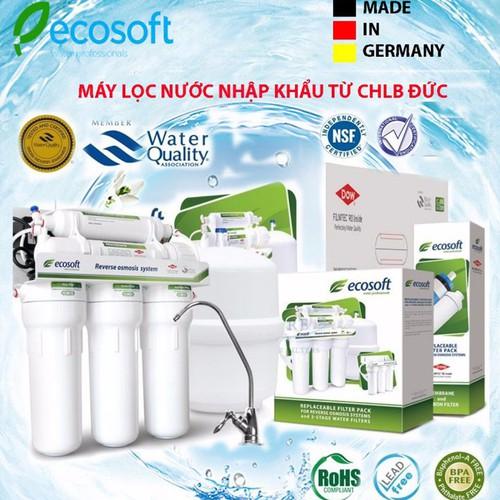 Máy bình lọc nước Ecosoft nhập khẩu nguyên chiếc