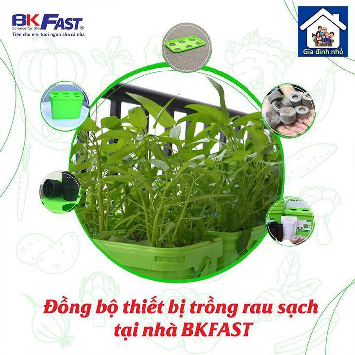 Thiết bị trồng rau thuỷ canh BKFAST
