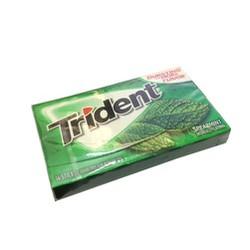Lốc 15 Kẹo Cao Su Triden Spearmint USA 210 Stick