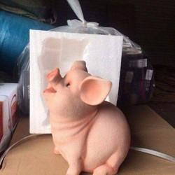 lợn thạch cao tiết kiệm tiền