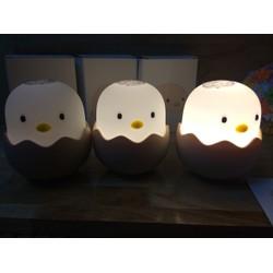 Đèn ngủ Trứng Gà, Hình tự chụp , hàng có sẵn
