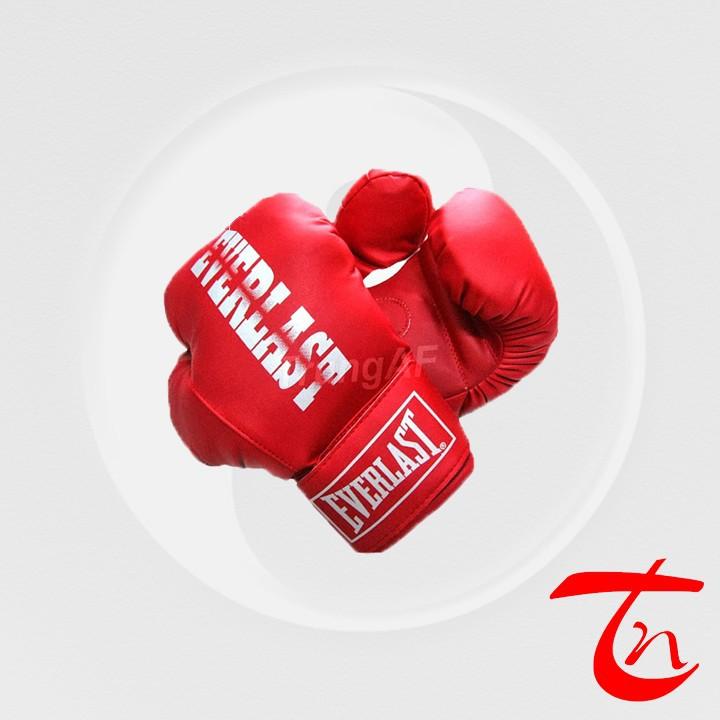 vỏ bao cát và găng tay boxing - võ phục trung nghĩa 2