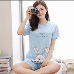 đồ bộ mặc ở nhà thun cotton QUẢNG CHÂU Ts