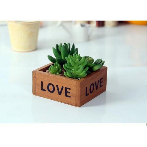 Chậu gỗ trồng sen đá, xương rồng - Mẫu vuông Love
