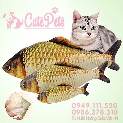 [Size L 40cm + Catnip] Đồ chơi Cá chép bông cho mèo - CutePets - 5963046 , 10054015 , 15_10054015 , 65000 , Size-L-40cm-Catnip-Do-choi-Ca-chep-bong-cho-meo-CutePets-15_10054015 , sendo.vn , [Size L 40cm + Catnip] Đồ chơi Cá chép bông cho mèo - CutePets