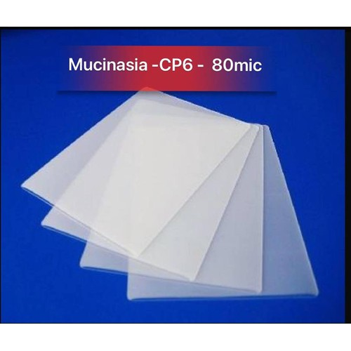 Giấy Ép Plastic Khổ A4- CP6 -  80mic