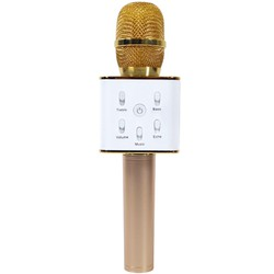 Mic karaoke giá rẻ chất lượng cao
