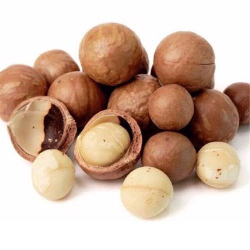 HẠT MACCA ÚC NUTS TALK 500G - Tặng kèm đồ tách vỏ