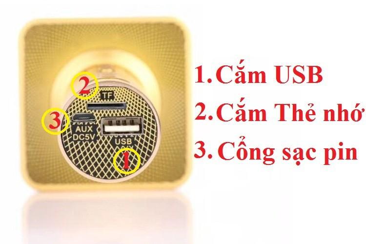 Micro karaoke Không dây Bluetooth gắn thẻ nhớ USB PKCB-08 Auth 6