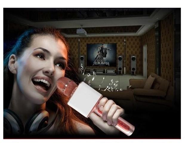 Micro karaoke Không dây Bluetooth gắn thẻ nhớ USB PKCB-08 Auth 7