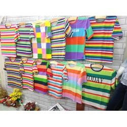 Combo áo phông nữ cotton 4 chiều cầu vồng tay lỡ rộng giá sỉ