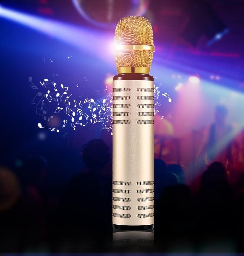 Micro kèm loa Bluetooth Karaoke nhập khẩu PKCB K6 cắm thẻ nhớ PF14 11