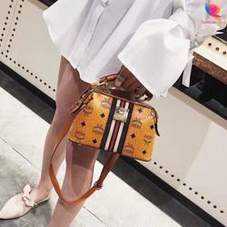 Túi đeo chéo nữ mini đi chơi