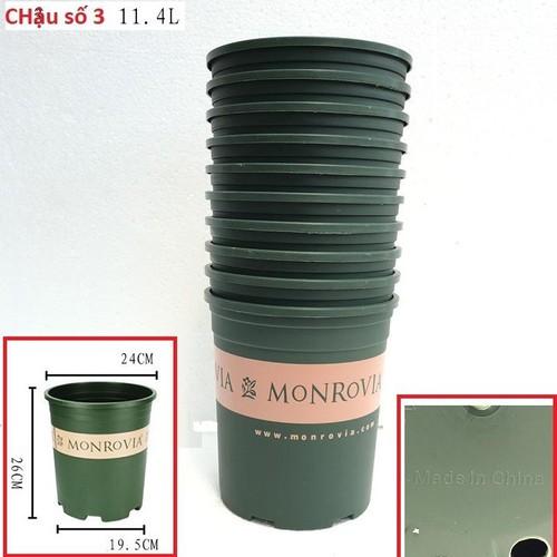 Set 10 chậu nhựa trồng cây Monrovia cỡ số 3 xuất xứ Trung Quốc - 10785600 , 11155938 , 15_11155938 , 500000 , Set-10-chau-nhua-trong-cay-Monrovia-co-so-3-xuat-xu-Trung-Quoc-15_11155938 , sendo.vn , Set 10 chậu nhựa trồng cây Monrovia cỡ số 3 xuất xứ Trung Quốc