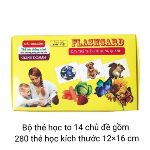 Thẻ học song ngữ việt anh size cực to