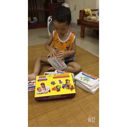 Thẻ học thông minh flashcard loại to chủ đề thế giới xung quanh