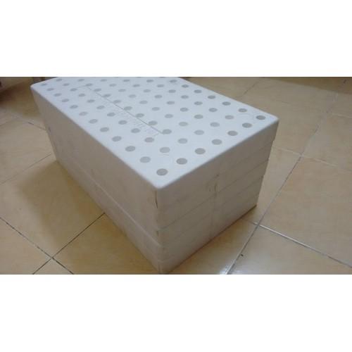 Bộ 5 KHAY XỐP ƯƠM CÂY 84 LỖ, sản xuất bởi EPS TÍN THÀNH - 7834089 , 11210681 , 15_11210681 , 115000 , Bo-5-KHAY-XOP-UOM-CAY-84-LO-san-xuat-boi-EPS-TIN-THANH-15_11210681 , sendo.vn , Bộ 5 KHAY XỐP ƯƠM CÂY 84 LỖ, sản xuất bởi EPS TÍN THÀNH