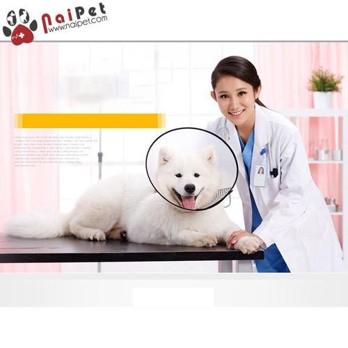 Vòng Chống Liếm Vòng Bảo Hộ Chó Mèo size 2