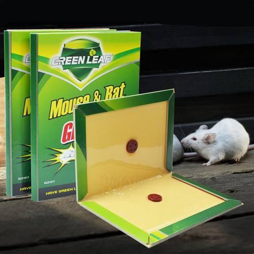COMBO 4 miếng keo dính bẫy chuột siêu dính