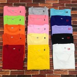 Áo thun trơn nữ kiểu Hàn Quốc Vải Dày Mịn Nhiều Màu