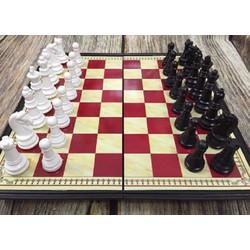 Bộ cờ vua nam châm kích thước 28x28cm