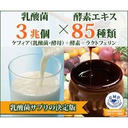 Viên nén men sữa chua Kefir và 85 loại Enzim, Nk Nhật Bản