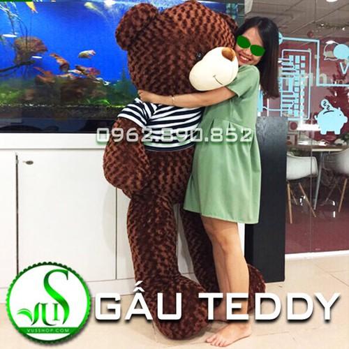 Gấu bông Teddy lông siêu mịn 2m - nâu đen gòn loại 1