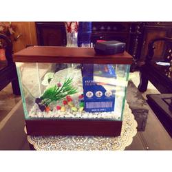 Bể cá mini đèn led và lọc thác để bàn