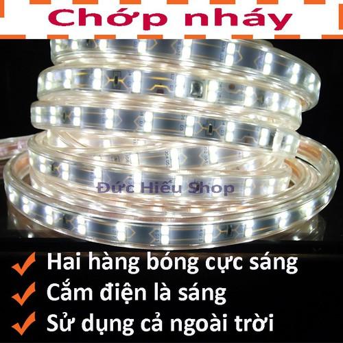 Đèn LED dây đôi 2835-5M - 5126070 , 11357438 , 15_11357438 , 105000 , Den-LED-day-doi-2835-5M-15_11357438 , sendo.vn , Đèn LED dây đôi 2835-5M