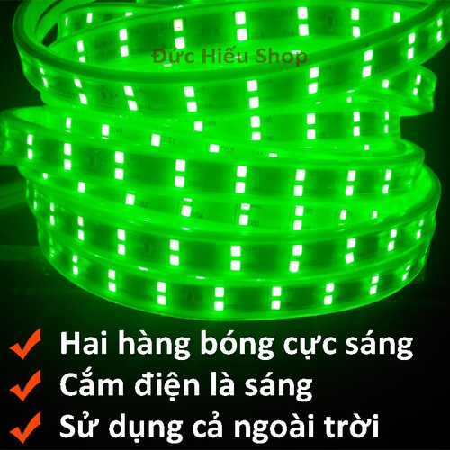 Đèn LED dây đôi 2835-5M