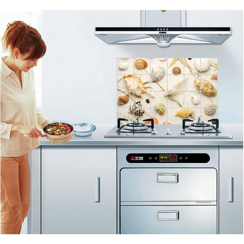 Decal dán bếp tráng nhôm cách nhiệt size lớn - nhiều vỏ sò