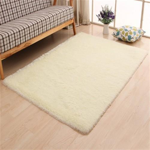 Thảm lông chụp ảnh, phòng khách, thảm sofa cao cấp 1m2x0,8m