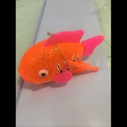 cá chép trung thu