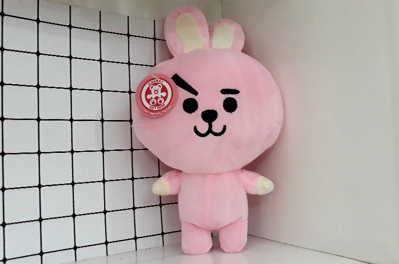 Gấu Bông BT21- Doll Cooky 3