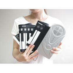 Đàn piano cầm tay