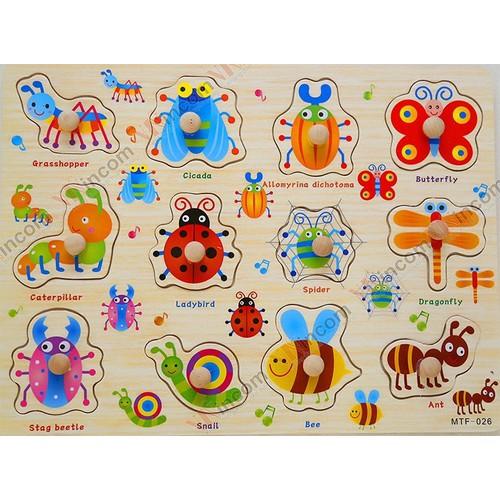 Bảng ghép núm - côn trùng - 10746693 , 10985123 , 15_10985123 , 35000 , Bang-ghep-num-con-trung-15_10985123 , sendo.vn , Bảng ghép núm - côn trùng