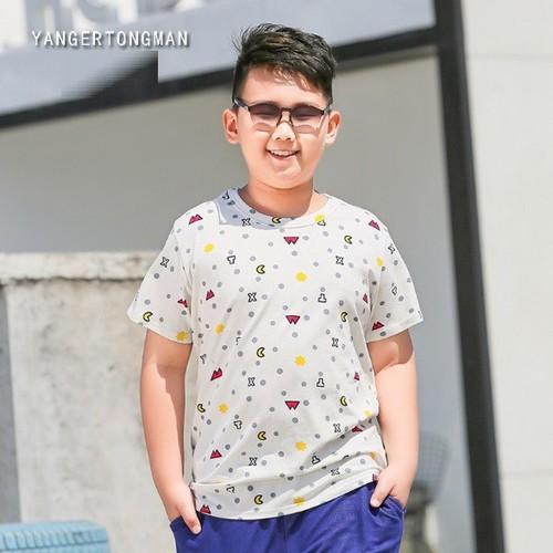 AT18611- Áo thun bé trai 23 đến 50kg - giá 260k