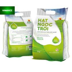 Combo Gạo Hạt Ngọc Trời Bạch Dương 10kg - gạo trắng hạt dài dẻo vừa thơm lài