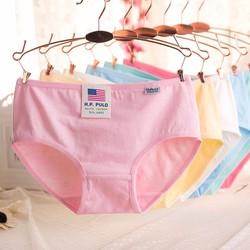 Bộ 05 quần nữ cotton xuất mỹ