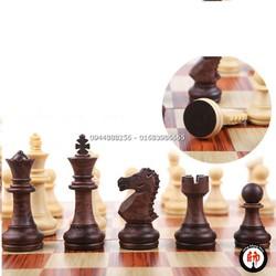 Bộ cờ vua đẹp 31x36 - Tika
