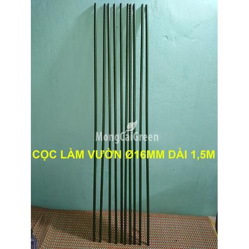 Bó 10 Cọc Ø 16mm x 150cm ống thép bọc nhựa - Cọc làm vườn - 5356308 , 11710882 , 15_11710882 , 200000 , Bo-10-Coc-16mm-x-150cm-ong-thep-boc-nhua-Coc-lam-vuon-15_11710882 , sendo.vn , Bó 10 Cọc Ø 16mm x 150cm ống thép bọc nhựa - Cọc làm vườn