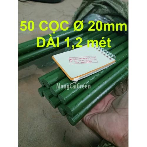 Bó 50 Cọc Ø 20mm x 120cm ống thép bọc nhựa - Cọc làm vườn - 5378100 , 11738489 , 15_11738489 , 920000 , Bo-50-Coc-20mm-x-120cm-ong-thep-boc-nhua-Coc-lam-vuon-15_11738489 , sendo.vn , Bó 50 Cọc Ø 20mm x 120cm ống thép bọc nhựa - Cọc làm vườn