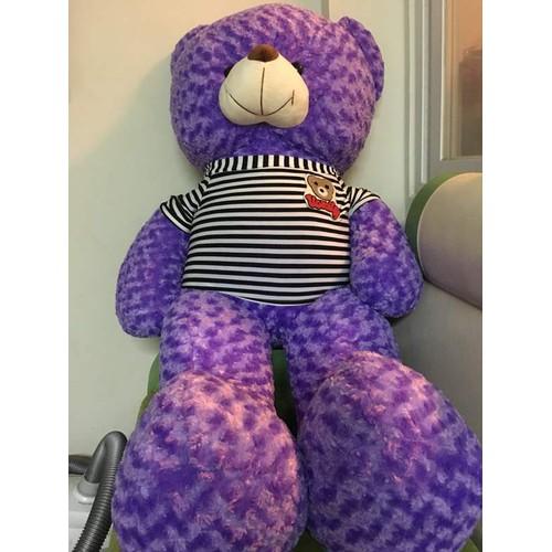 Gấu bông - Gấu bông Teddy khổ m6 giá rẻ Tm6