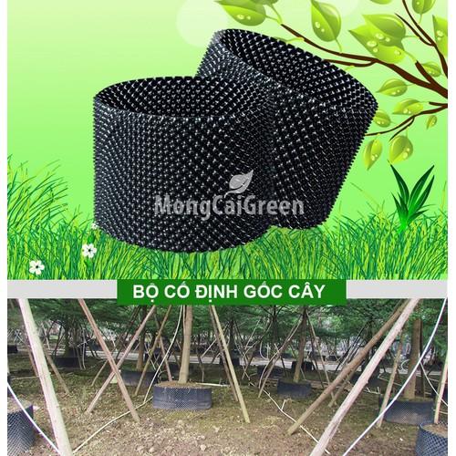 Chậu nhựa trồng cây - Cao 0,7m dài 25m -Tấm nhựa PVC - 6199049 , 12757056 , 15_12757056 , 750000 , Chau-nhua-trong-cay-Cao-07m-dai-25m-Tam-nhua-PVC-15_12757056 , sendo.vn , Chậu nhựa trồng cây - Cao 0,7m dài 25m -Tấm nhựa PVC